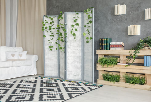 room-with-room-divider-P7FBBC3.jpg
