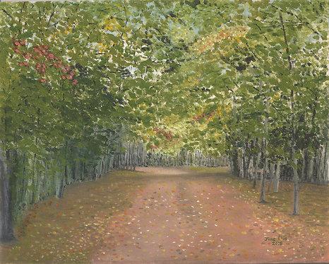 Mill River Lane