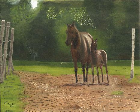 Vernon's Horses