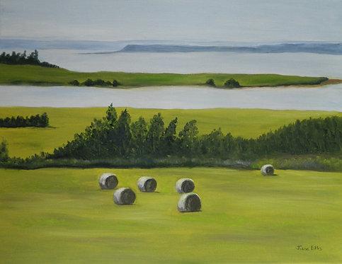 Farm and Sea (original oil painting 11x14)