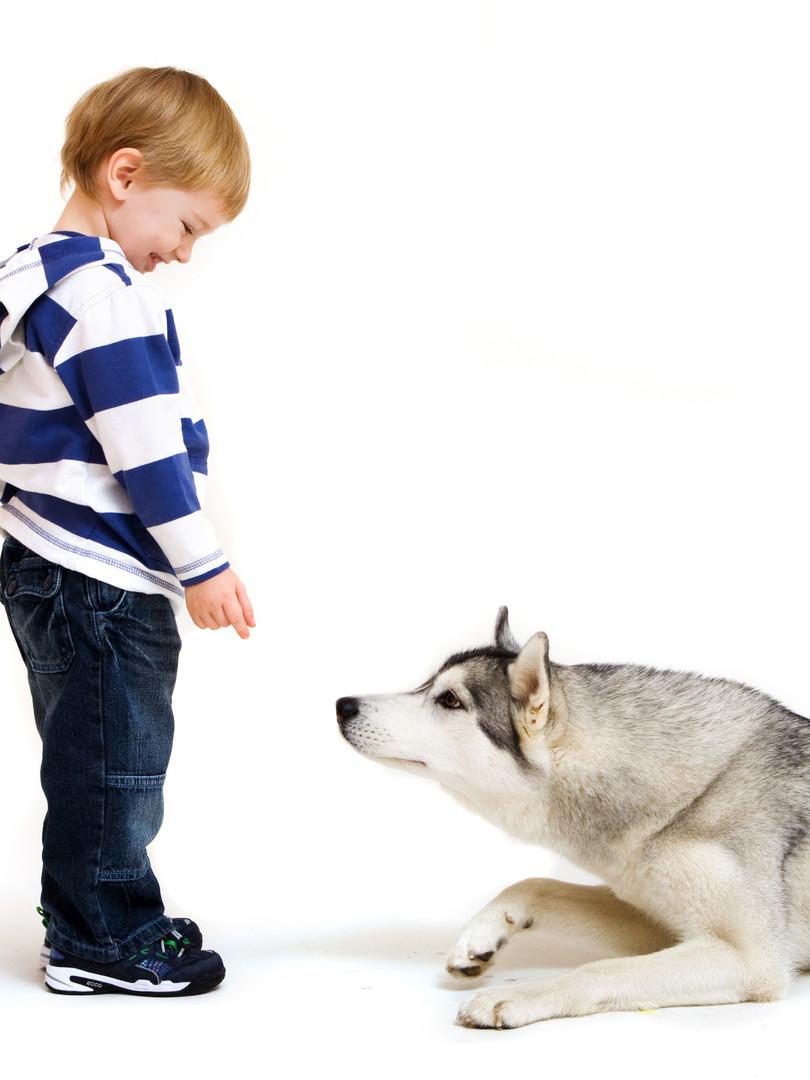 Interactions sécuritaires chien-enfant