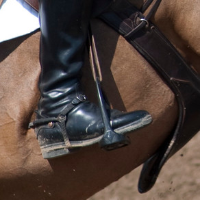 Equitation et acceptabilité sociale