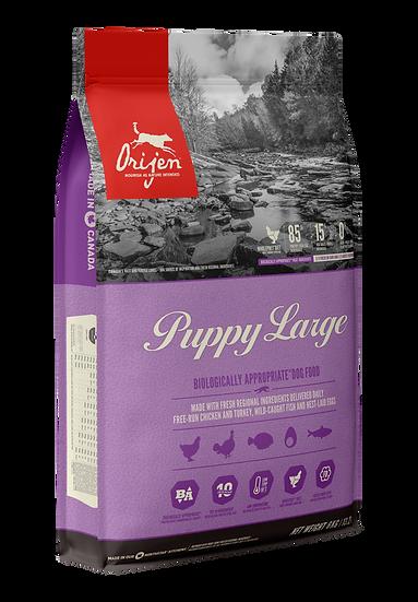 Orijen - Puppy Large Breed