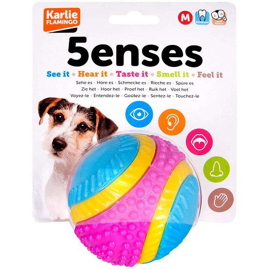 5 Senses Ball