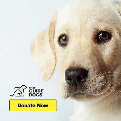 CNIB Guide Dog FB Ad 1080x1080.jpg