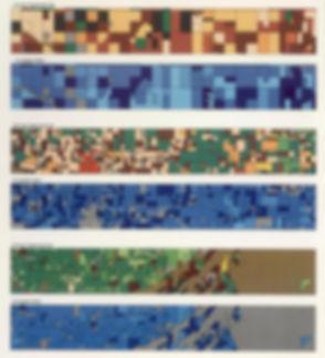 crop patterns.jpg
