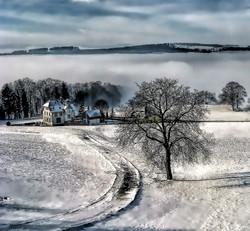 Colin Bush - Valley Fog