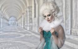 Barry Harrington - A Portrait in Venice
