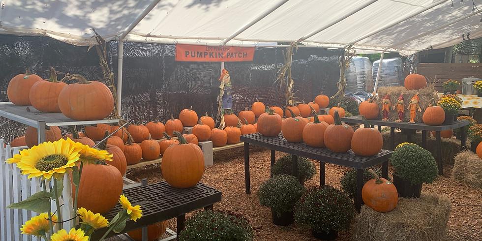 DK Farm Festival Weekend 1 (Oct. 9 & 10)