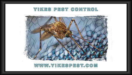 Mosquito Spray Evansville Indiana