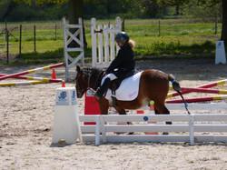 Equifun poney
