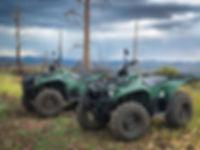 ATV Rentals in the White Mountains of Arizona