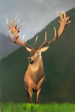 peinture_animalière_cours_genvève.jpg
