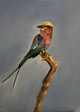 tableau oiseau 2 cours de peinture genev