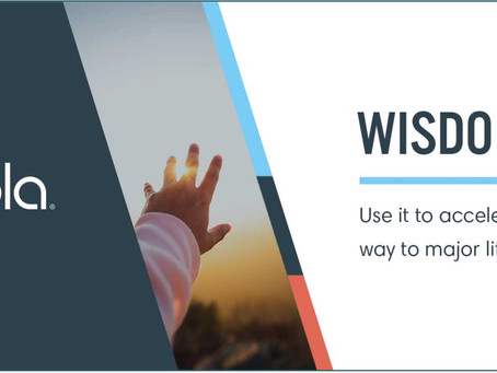 How to use Wisdom to Accelerate your Life