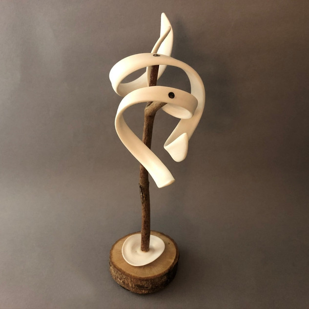 Rooted#1 - Porcelain Wood - H22cm W20cm