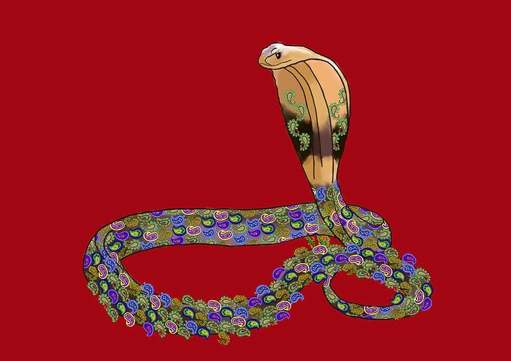 Snake 12 sm.jpg