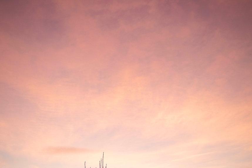 pink clouds.jpg