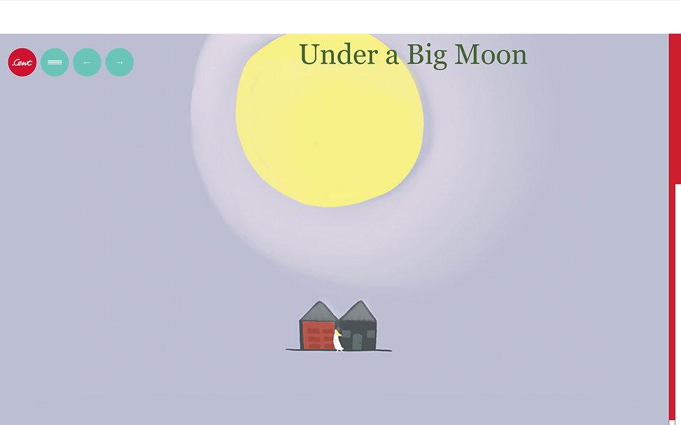 Moon top.jpg