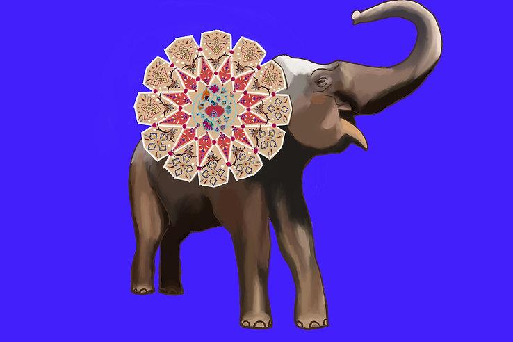 elephant 10.jpg