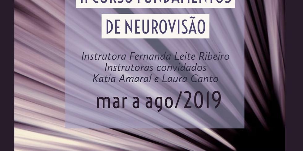 II Curso Fundamentos de Neurovisão (5/6)