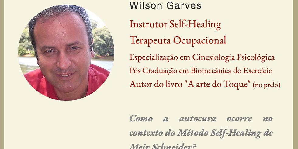 Como a autocura ocorre no contexto do Método Self-Healing de Meir Schneider?