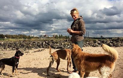 Sabine Hulsebosch, geprüfte Hundetrainerin in Neuss und Düsseldorf. Bekannt aus der TV Serie Projekt Superhund. Sabine Hulsebosch arbeitet mit Hunden aus dem Tierschutz und bildet Assistenzhunde aus. Tiergestützte Fachkraft, Verhaltensberatungin Neuss und Hundetherapie.jpg