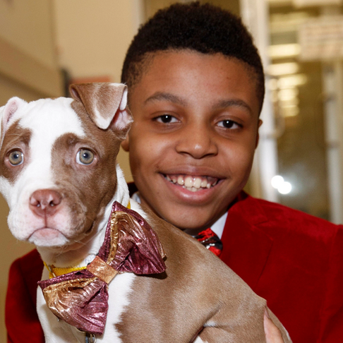 11-Year-Old Makes Bow Ties for Dogs to Help Them Get Adopted