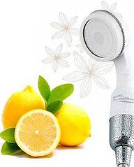 lemon600x600h.jpg