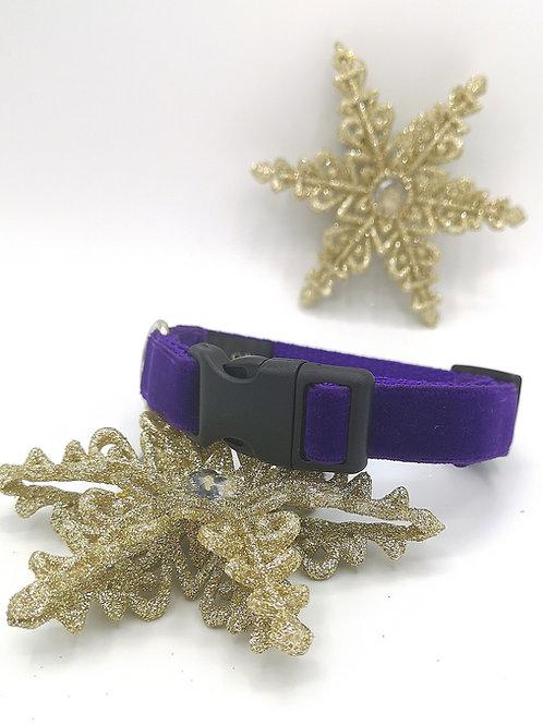 19mm Wide Dog Collar & Optional Lead in Purple Velvet on Purple Webbing