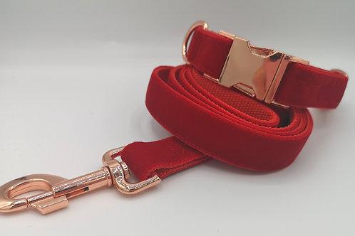 """Dog Collar/Lead Red Velvet Grosgrain 1"""" (25mm) Webbing, Rose Gold Hardware"""