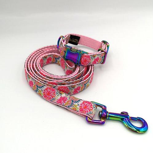 16mm Wide Miniature Dog Collar & Lead Set , Pink Webbing, Neo (Rainbow) Chrome