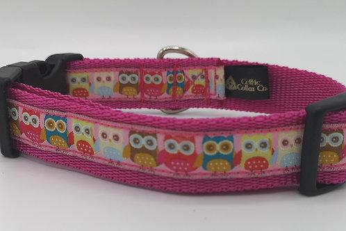 "Owls woven jacquard ribbon on cerise 1"" webbing size 12"" - 18"""
