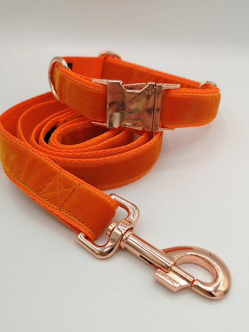 "Orange Velvet Dog Collar Lead Leash Set 1"" (25mm), Rose Gold Buckle"