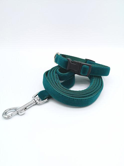 Teal Velvet Puppy Set,  Miniture Dog Collar, Lead Leash 16mm Velvet & Webbing
