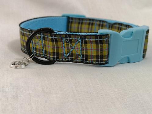 """Dog Collar in Cornish Tartan Ribbon on Turquoise 1"""" Webbing."""