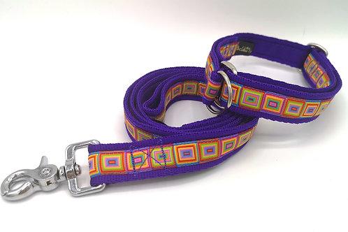 Slip Stop Martingale Dog Collar, Purple Cushion Webbing, Multi Cubes Ribbon.