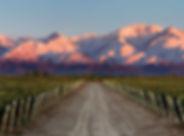 Mendoza-Amdr.jpg