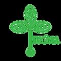 tkena logo transparent.png