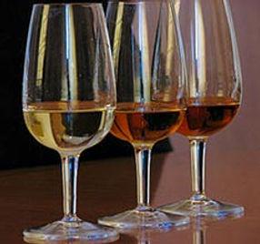 Wine_Tasting_at_Marsala_2.jpg