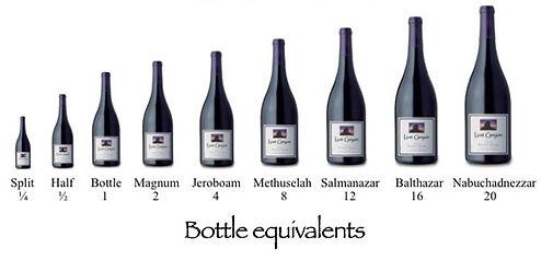 Bottle%20Sizes_edited.jpg