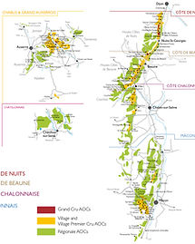 burgundy wine map.jpg