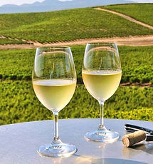 white wine tuscany (2).jpg