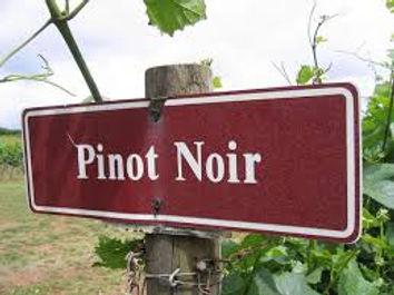 pinot noir sign.jpg