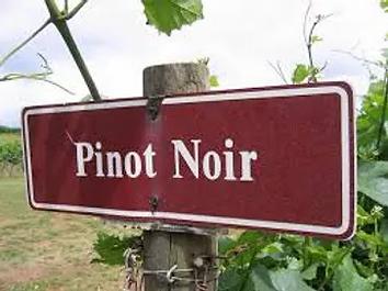 pinot noir sign (1).webp
