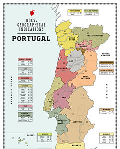 Portugal wine map.jpg