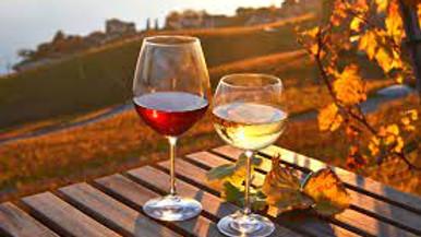 """12 Favorite Fall Values"" Wine Tasting: $8 Per Person"