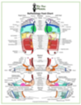 colour btm labelled foot chart.jpg