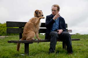 主人公の、観客の、人生に寄りそう犬映画