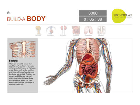 iPad App Build a Body